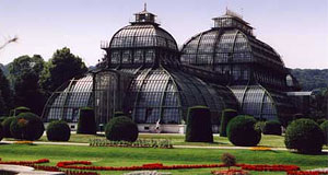 Not really a zoo, but right next to one: The Palmenhaus in Schönbrunn, Vienna
