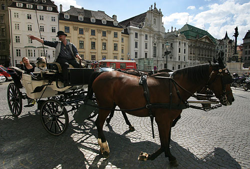 Horse and carriage (Fiaker) showing tourists around on Am Hof Square